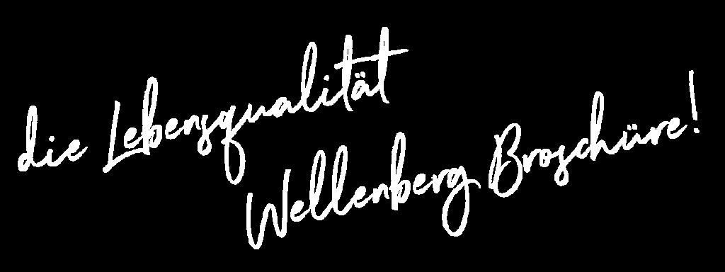 Contra Windradenergie Broschüre Wellenberg